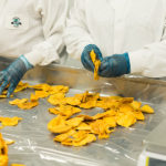 ManufacturingSafe Food During COVID-19 and Beyond