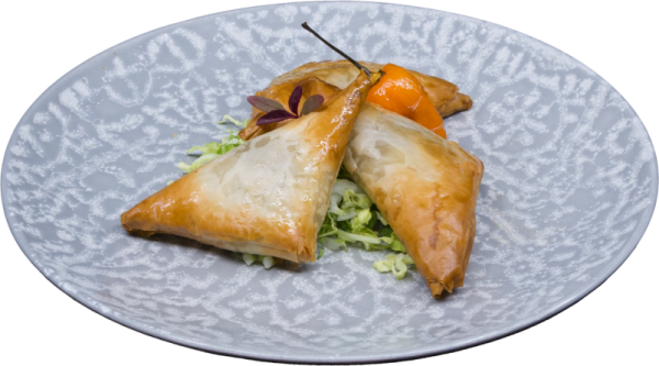 Southwestern_Chicken_In_Phyllo_Triangle1
