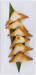 Wild_Mushrooms_in_Phyllo_Triangle2