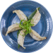 Chicken_and_Vegetable_Pot_Stickers2