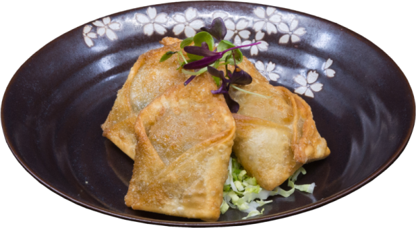 Vegetable_Won_Ton1