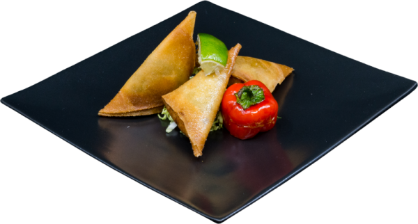 Vegetable_Curry_Samosa1
